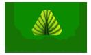 logo TF new